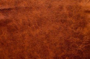 Aniline leather example